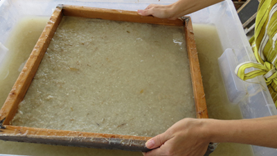 papermaking, handmade paper, workshops